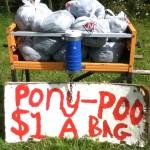 Pony Poo zu kaufen :D